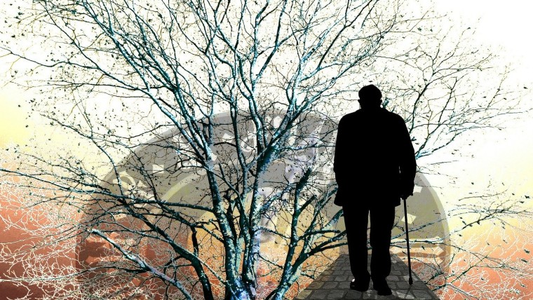独居老人とは?人口・増加の原因・問題について