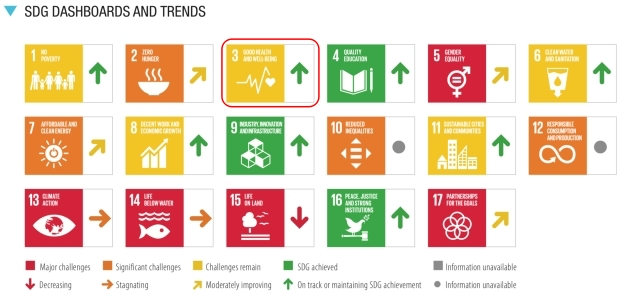 SDGs目標3.達成度_評価と傾向_2021